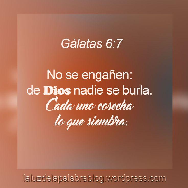 Gálatas 6:7
