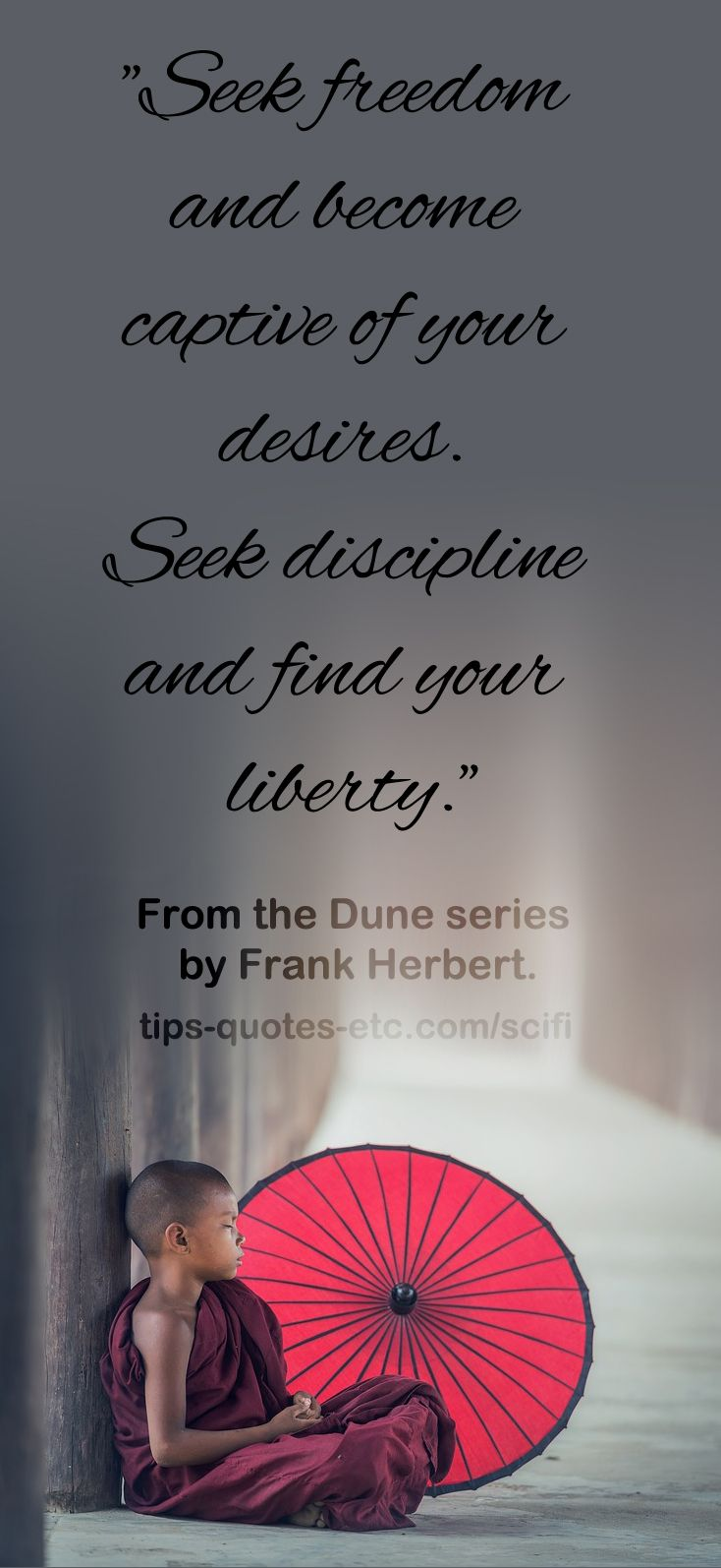 Seek Freedom And Become Captive Of Your Desires Seek Discipline And Find Your Liberty From The Dune Series Book Quotes Wonder Quotes Inspirational Quotes