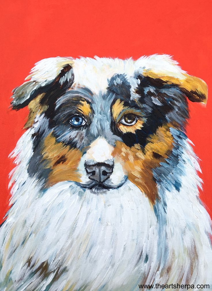 The Art Sherpa Paint Your Pet