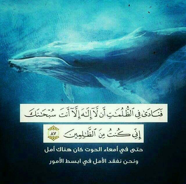 فنادى في الظلمات Quran Verses Islamic Quotes Holy Quran