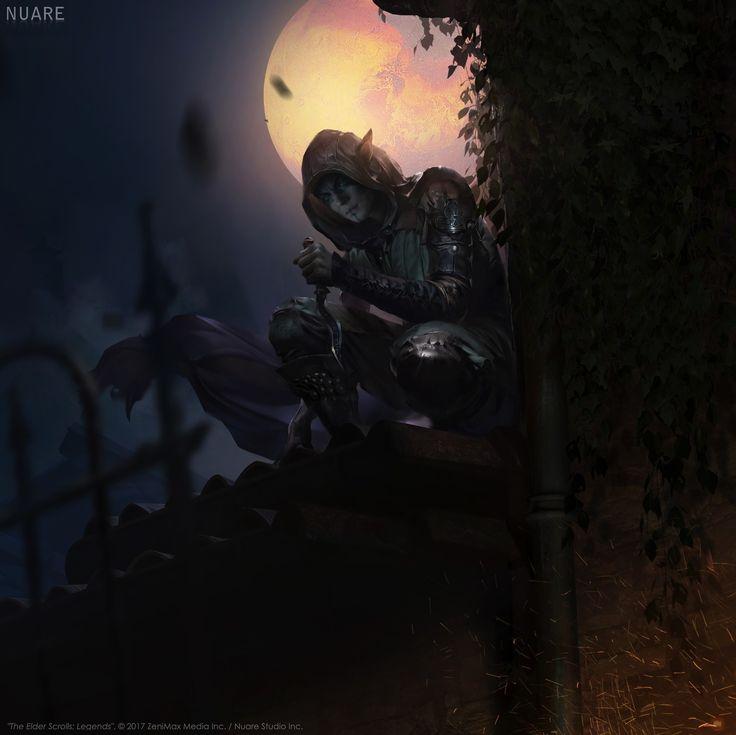 ArtStation - Brotherhood Slayer (The Elder Scrolls Legend), Nuare Studio