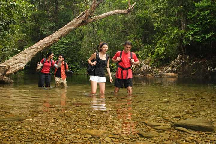 Image result for malaysia hiking