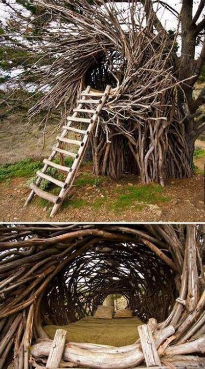 Awesome tree bed. :)