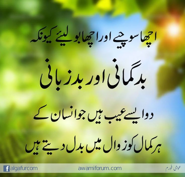 pin by syed adnan on urdu quotes quran verses pinterest