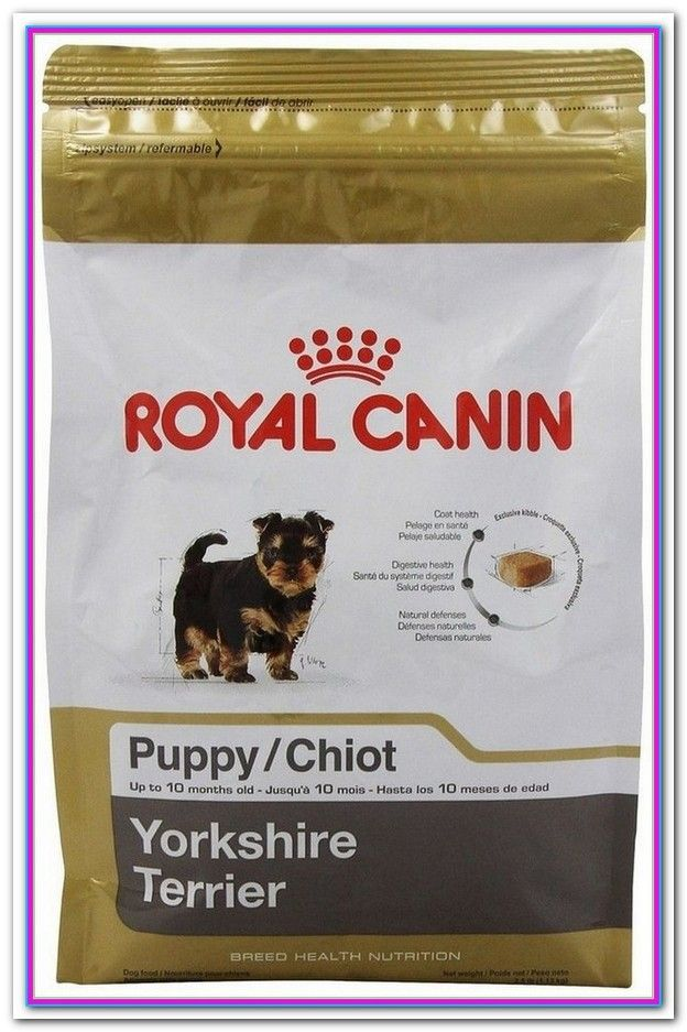 What Is The Best Wet Dog Food For Yorkies All Natural Dog Food