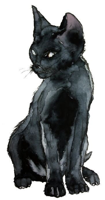 Awesome Art / Black Cat / Halloween Art