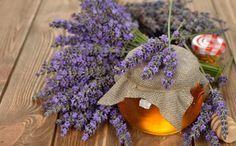 Lavendelhonig - Rezept | GuteKueche.at