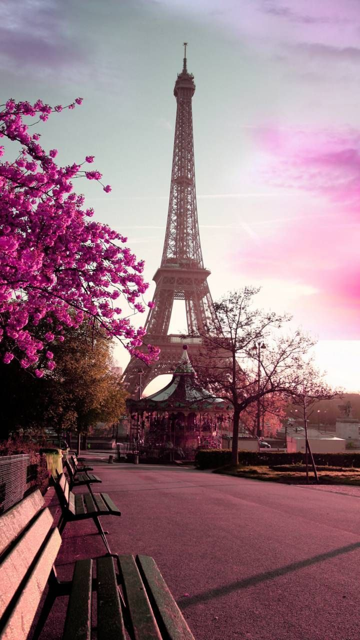 Download Paris Wallpaper By Georgekev Af Free On Zedge Now Browse Millions Of Popular Bench Paris Wallpaper Beautiful Wallpaper For Phone Paris Pictures Eiffel tower wallpaper hd download
