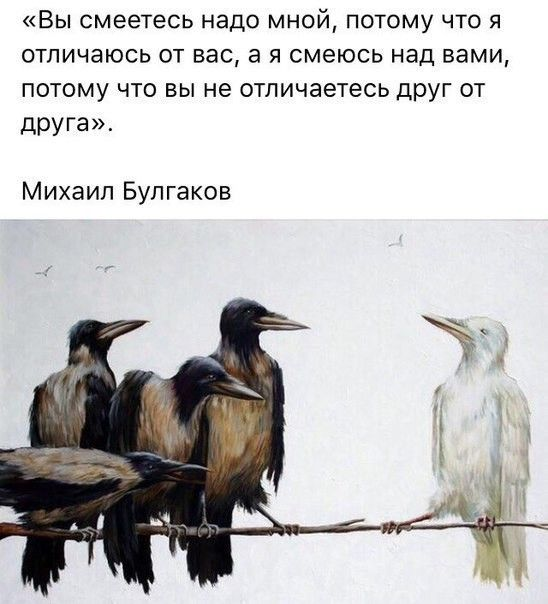 (18) Одноклассники