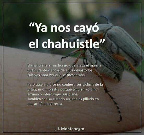 Diccionario mexicano