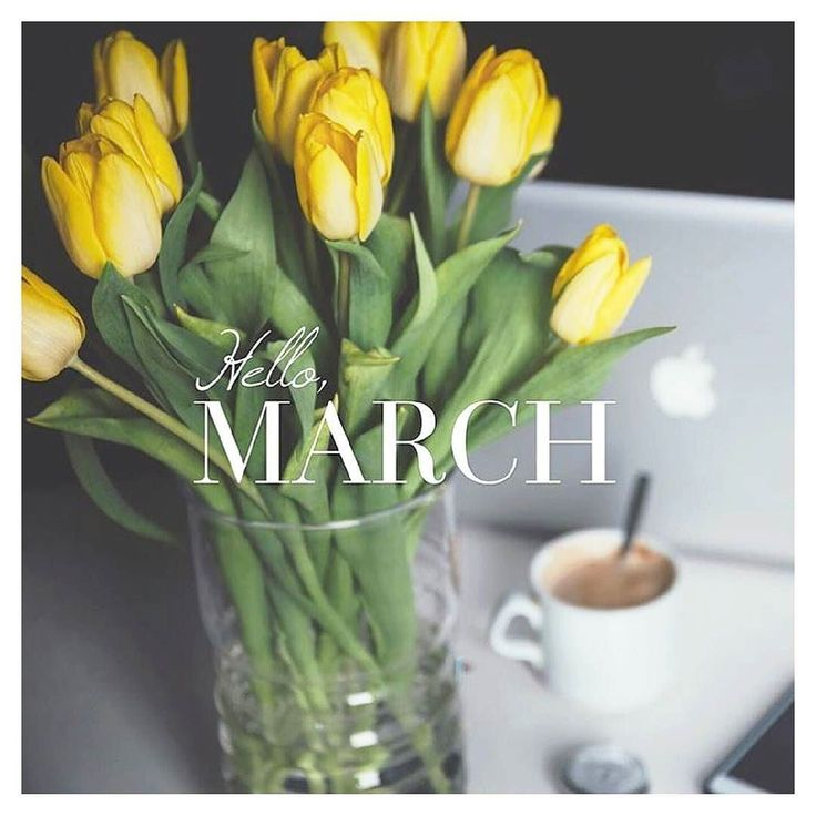 Your arrival marks the beginning of Spring and ain't I glad! Cheers to a brilliant new month my lovelies!