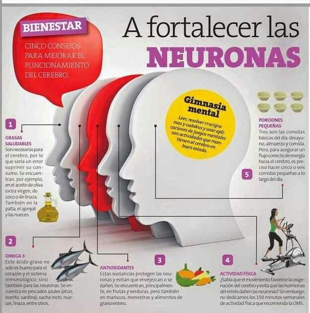 A fortalecer las neuronas
