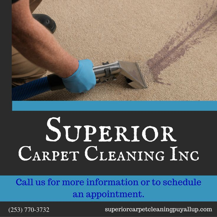 Carpet Steam Cleaning in Puyallup, WA Upholstery Cleaning in Puyallup, WA Air Duct Cleaning in Puyallup, WA Tile and Grout Cleaning in Puyallup, WA Pet Stain and Odor Removal in Puyallup, WA Carpet Stretching and Repair in Puyallup, WA House Cleaning Move in/out in Puyallup, WA Roof and Gutter Cleaning in Puyallup, WA Pressure Washing in Puyallup, WA Free Estimate Cleaning in Puyallup, WA Emergency Service 24/7 Water Extraction in Puyallup, WA Carpet and Fabric Protection in Puyallup, WA