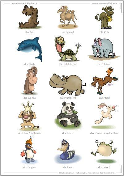 Foreign Language GOLDMINE!!! German Flashcards, German ...