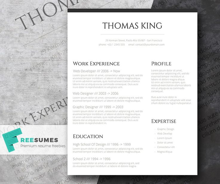 free stylish cv template word templates professional clean basic but resume layout format download