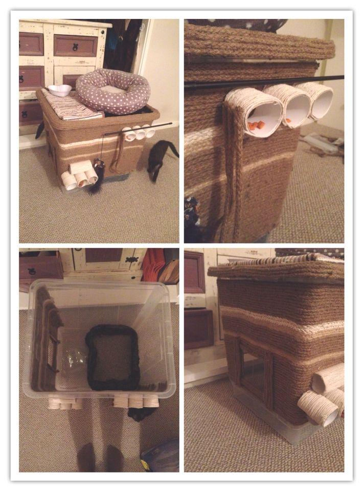 best 25 dog proof litter box ideas on pinterest litter box diy litter box and cat feeding. Black Bedroom Furniture Sets. Home Design Ideas