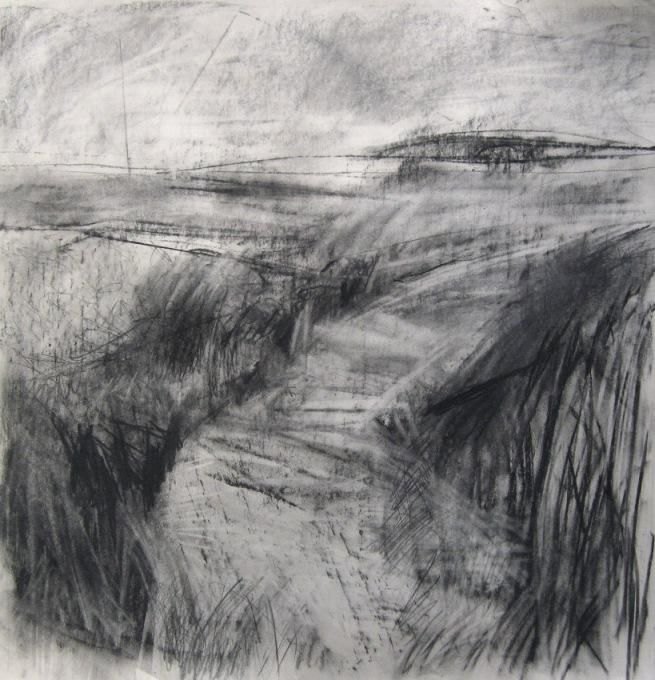 @janine_baldwin #DrawingAugust Picking up textures through wafer thin newsprint - windswept #landscape