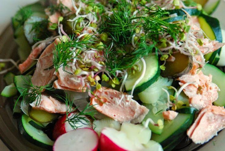 alpacasquare - Łosoś gotowany na parze, cukinia, rzodkiewki, ogórek kiszony, kiełki, koperek