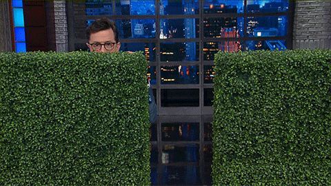 New party member! Tags: stephen colbert hiding the late show sean spicer bushes