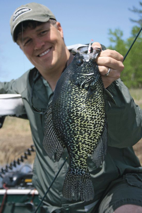 1092 best fishing images on pinterest fishing stuff for Crappie fishing secrets