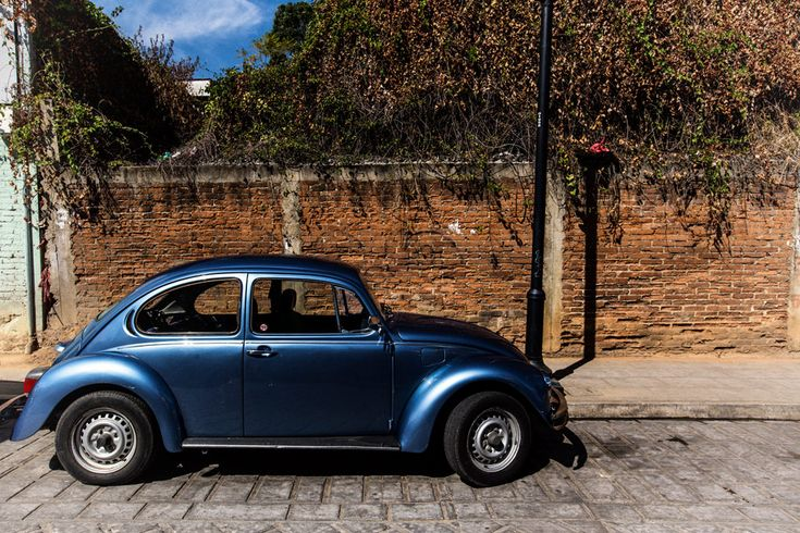 Blue Punch Buggy >> Beetlemania, in Photos