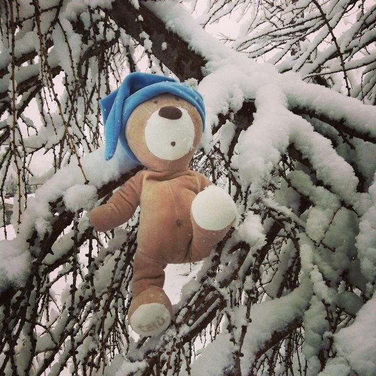 Sulla neve!