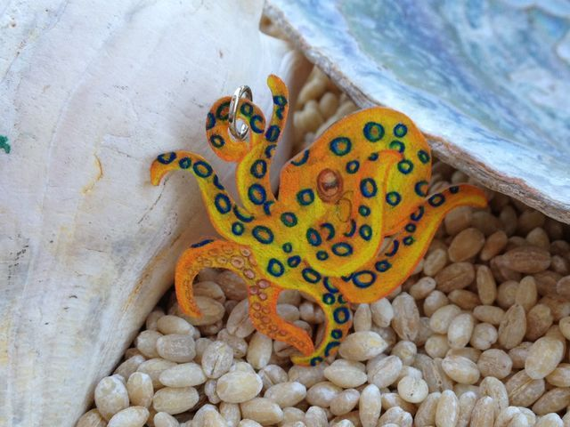 Freshwater octopus - photo#31