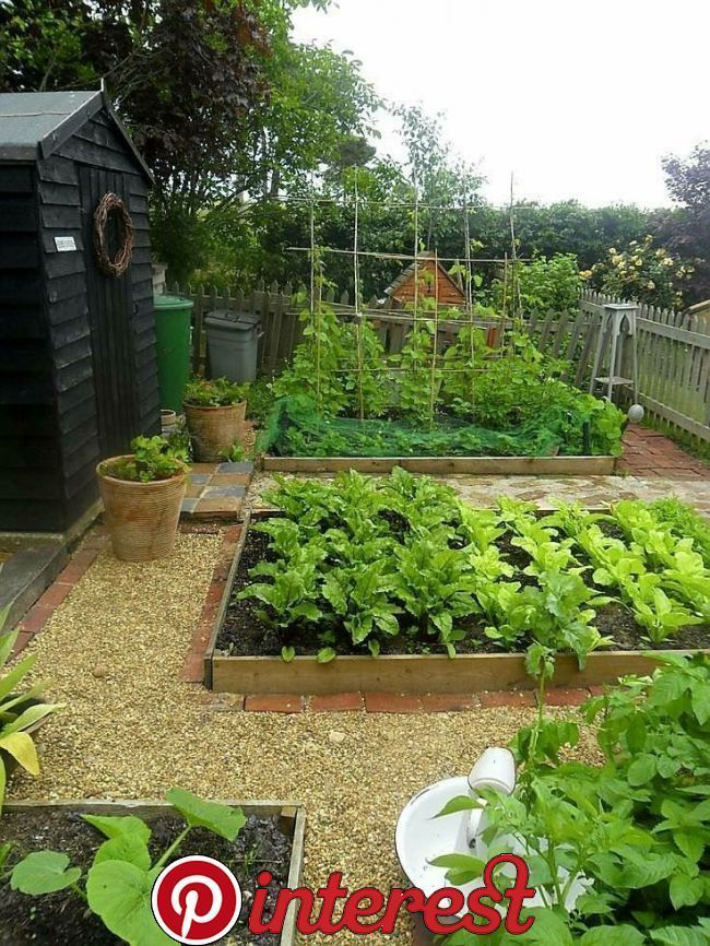 Raised Garden Beds With Pea Gravel Mulch And Edging Ideas In 2020