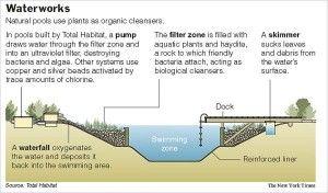 swimming in natural water » natural swimming pool filteration process