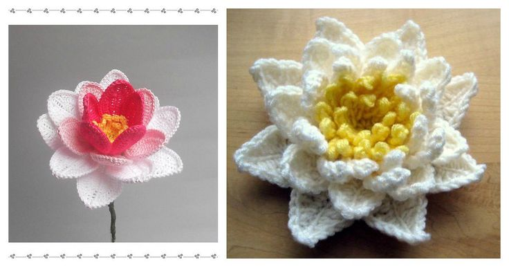 You don't have to be a professional gardener to appreciate this month's Crochet Pretty Water Lily! There are not only adorable, but also have many usages.