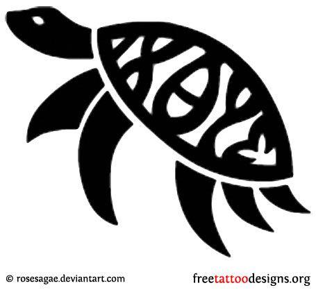 50 best turtles images on pinterest google images turtles and tortoises. Black Bedroom Furniture Sets. Home Design Ideas