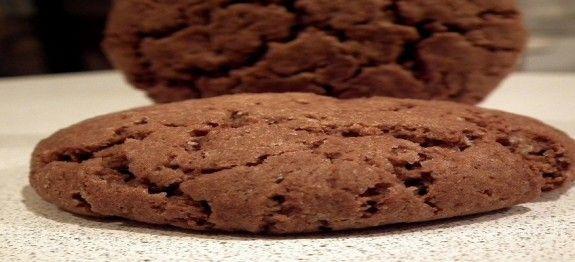 Biscotti con farina d'avena | Ricette Al Forno, Dessert
