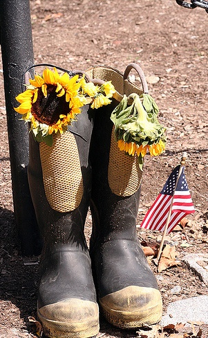 memorial day honda special