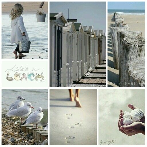 ¤؛ Coastal Living ؛¤