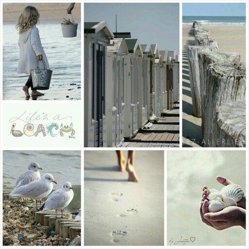 Life's a beach. #moodboard #mosaic #collage