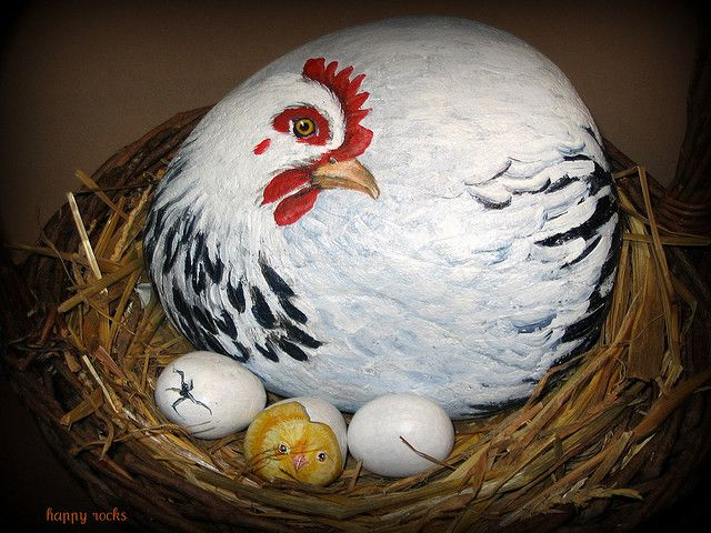 Poule couveuse: ♥ღ I love this; a hen and her chicks