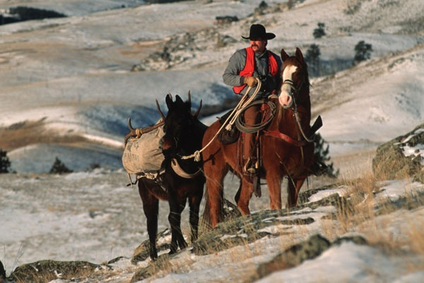 Horseback Hunting - The Easy way in and out.