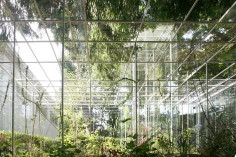 'Greenhouse designing with Yoshizaka', junya.ishigami+associates, Japan Pavilion, 11th International Architecture Exhibition, La Biennale di Venezia, 2008