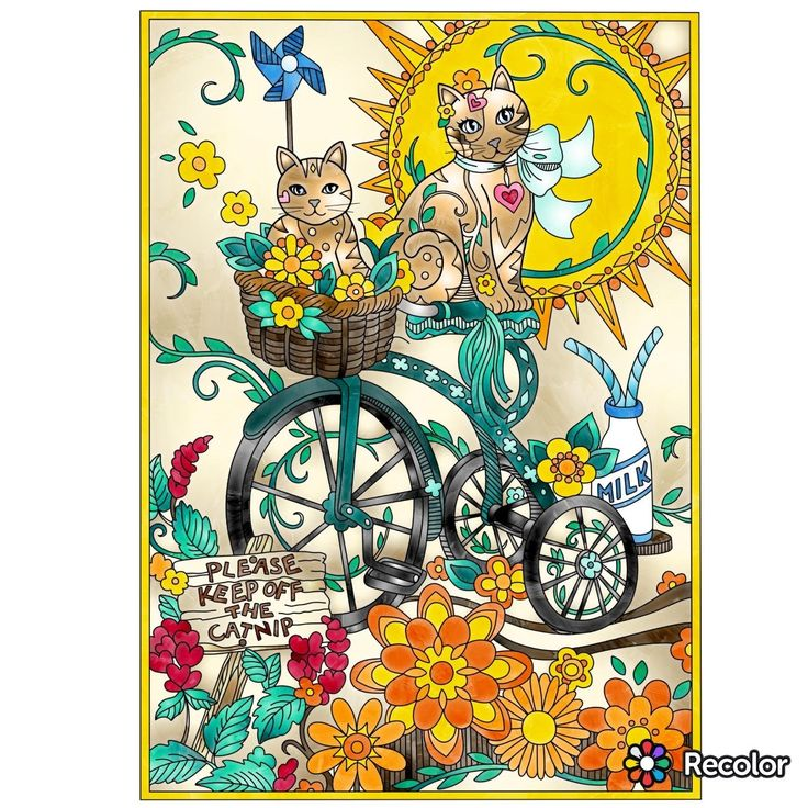 Marjorie Sarnats Pampered Pets New York Times Bestselling Artists Adult Coloring Books Sarnat Absolutely Wonderful Pictures By Cats On May