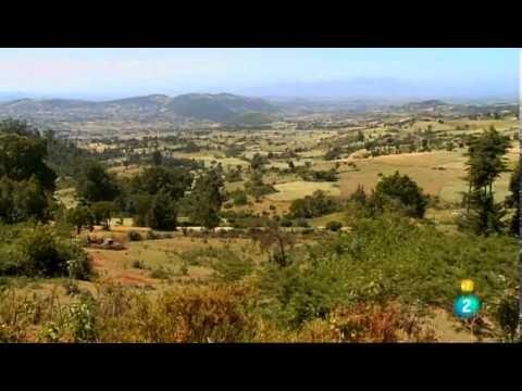 Planeta en Venta - Documental Completo - YouTube