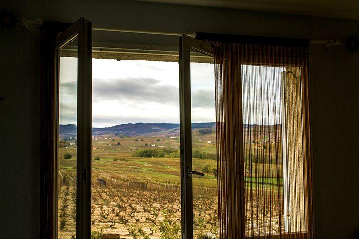 Une vue imprenable sur le vignoble, été comme hiver.