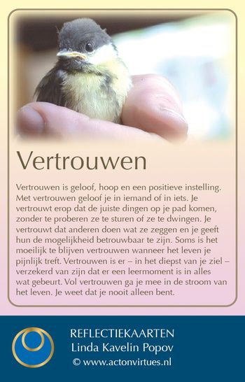 Stichting Deugdenproject Nederland - Welkom bij het Deugdenproject