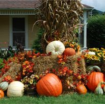 The Smoky Mountain Harvest Festival is a countywide celebration of the harvest season features festivals, special events and autumn-themed displays. September 13 - 30. For More Information Call: 1-800-568-4748
