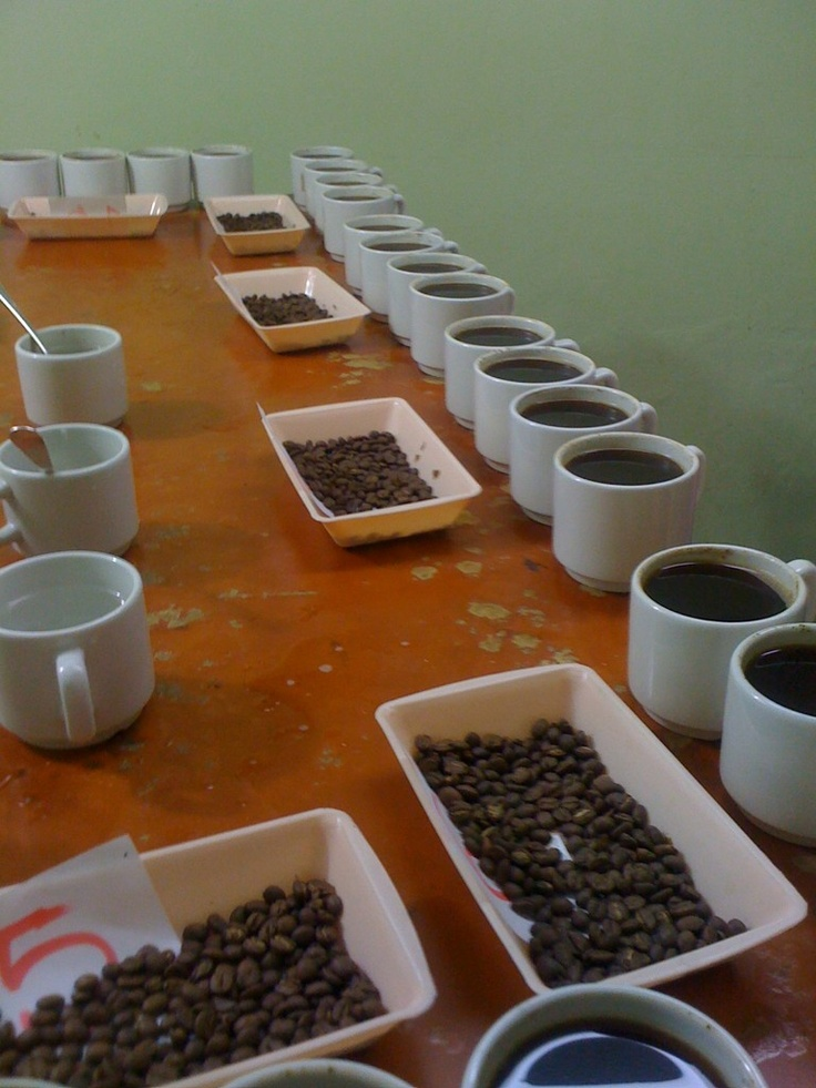 Coffee from Colombia, the best in the world