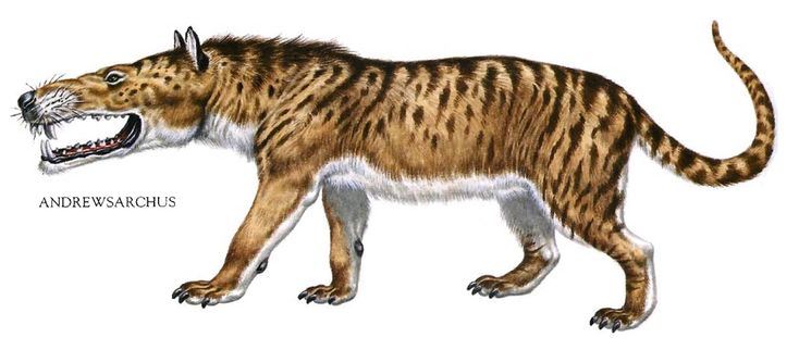 Andrewsarchus - Huge Mouthed Hyena Dinosaur | Science/Knowledge ...: https://www.pinterest.com/pin/510032726522765359