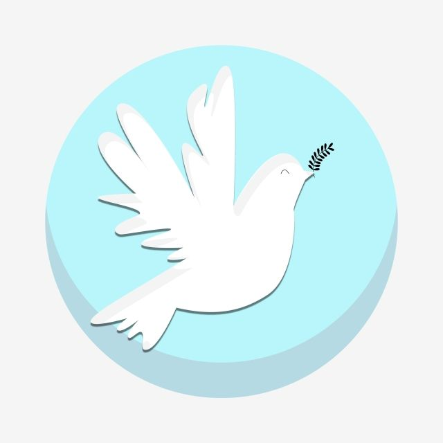 White Dove Png Clipart The Best Png Clipart Dove Images Dove Pictures Clip Art