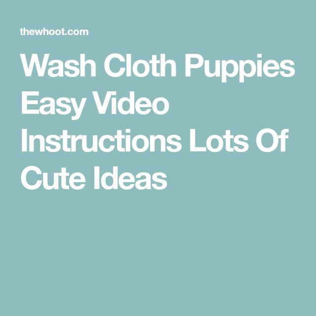 Wash Cloth Puppies Easy Video Instructions Lots Of Cute Ideas