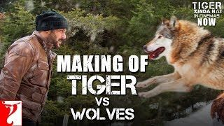Making of Tiger vs Wolves | Tiger Zinda Hai | Salman Khan | Katrina Kaif | Ali Abbas Zafar | lodynt.com |لودي نت فيديو شير