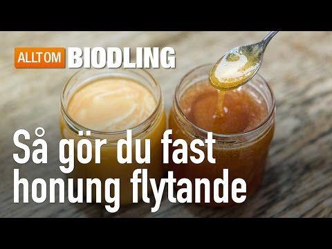 Så gör du fast honung flytande – Allt om honung