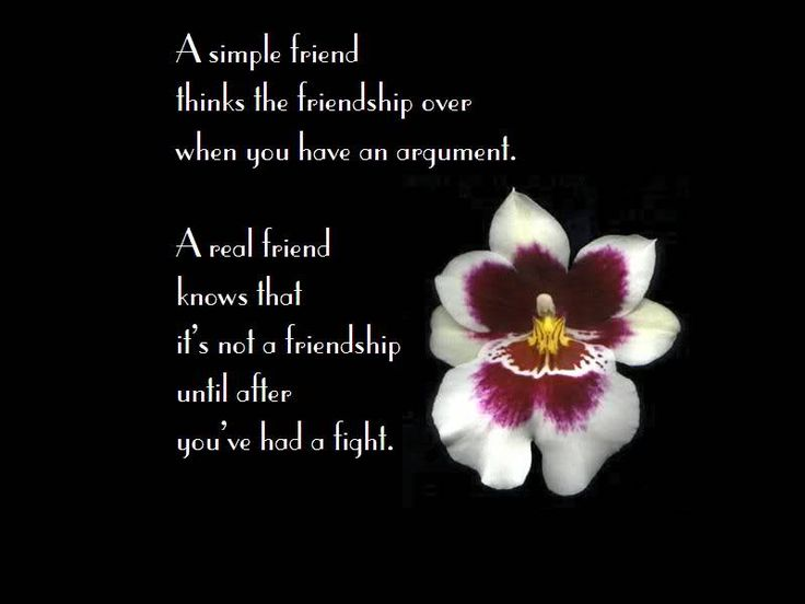 True Friend Hindi Quotes Best Friend Images In Hindi